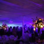 nunta-verde-585